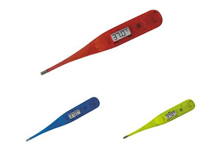 Transparent Digital Thermometer